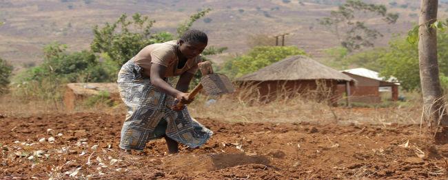 Malawi Food Crisis: Jenipher's story